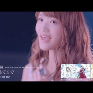 some_hayamisaori291108mv